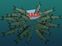 The covey of fishes looks at a hook. With a table sale Stock Images