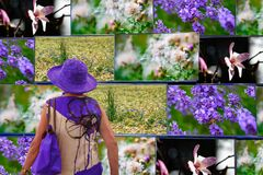 Free Covid-19: Be Creativ, Let The Beautiful Nature Come Inside - Just In Your Fantasy! Woman Stays Home, Watchs Pictures Of Nature. Stock Images - 178281084