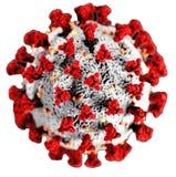 COVID 19 virus cell white background Coronavirus outbreak in 2019