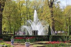 Covone della fontana Fotografia Stock