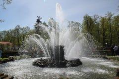 Covone della fontana Immagini Stock Libere da Diritti