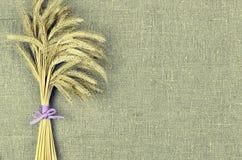 Covone delle orecchie del grano sul fondo della tela di tela Concetto della raccolta Immagine Stock