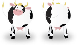 Cow. 's front and rear view Stock Photo