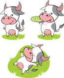 Cow. Three cow cartoons. Vector illustration Royalty Free Stock Image
