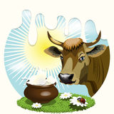Cow. Illustration, cow on glade with daisywheel on background milk Stock Photography