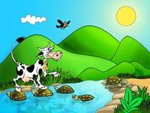 Free Cow Stock Photos - 15095733