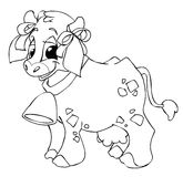 Cow. Cute cow with a bell Stock Image