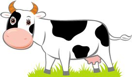 Cow. Vector image of smiling cow Stock Photo
