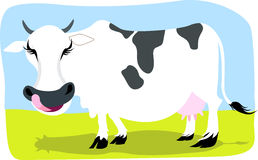 Cow. Illustration of a cow with tongue outside Stock Image