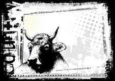 Cow background Stock Image