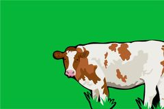 Cow background Stock Photography