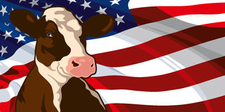 Cow on a background of flag of the USA Stock Photo