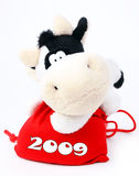 Cow On A Bag 2009. Beautiful cow sits on bag of gifts 2009 isoleted on white Royalty Free Stock Image