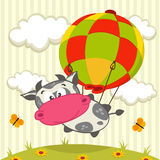 Cow in the balloon Royalty Free Stock Images