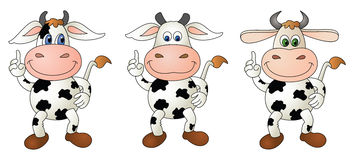 Cow 5 bare - composite royalty free stock photos