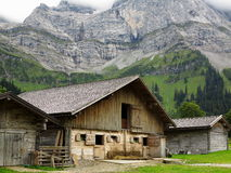 Cow barn in alpine landscape Stock Images