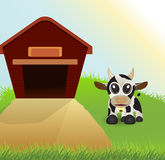 Cow and barn Royalty Free Stock Image