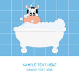 Cow bathing Royalty Free Stock Images