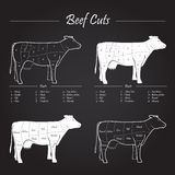 Cow beef meat cuts scheme on blackboard. Scheme American cuts of beef - milk cow cuts elements on blackboard Royalty Free Stock Images
