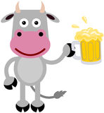 Cow and beer Royalty Free Stock Photography