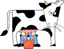 Cow being Milked
