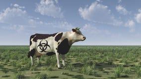 Cow. With bio hazard sign stock photos