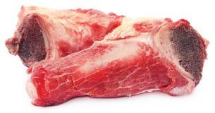 Cow bone Stock Photography