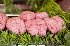 Cow brains in butcher shop Stock Photos