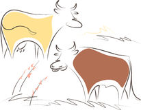 Cow and bull Stock Image