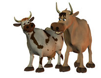 Cow and bull. 3D rendering of a cow and a bull Royalty Free Stock Photo
