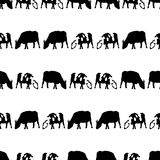 Cow and bull black shadows silhouette in lines pattern eps10 Royalty Free Stock Images