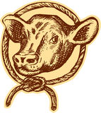 Cow Bull Head Rope Circle Etching Stock Images