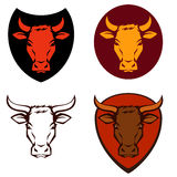 Cow or bull head in various color combinations Stock Photo