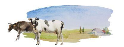 Cow and bull on the simple watercolor landscape with meadows and lonely house with some trees. Horisontal rural illustration