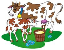 Cow with calf royalty free illustration