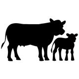 Cow and Calf Silhouette Royalty Free Stock Photos