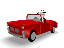 Cow car Royalty Free Stock Photography