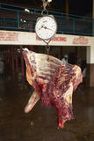 Cow carcass on scale being weighed at Nyongara slaughterhouse in Nairobi, Kenya, Africa Royalty Free Stock Photos
