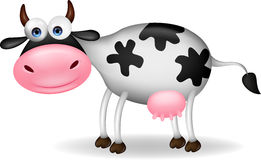 Cow cartoon Stock Images