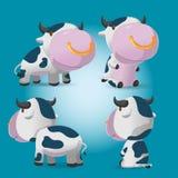Cow Cartoon Character Pose Set Vector Stock Photography