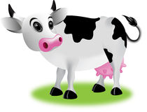 Cow cartoon Royalty Free Stock Images
