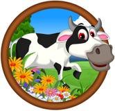 Cow cartoon posing Stock Photography