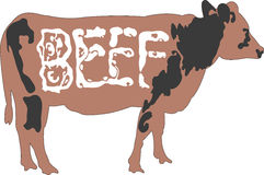 Cow cattle with beef word on body Stock Images
