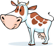 Cow character standing isolated on white background - vector Royalty Free Stock Images