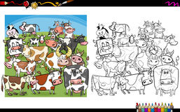 Cow characters coloring book Royalty Free Stock Image