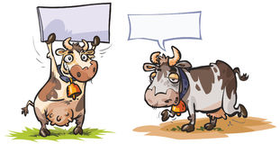 Cow characters. Royalty Free Stock Photos