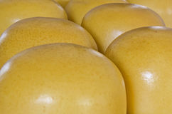 Cow cheese. Close up of yellow shiny cow cheese Royalty Free Stock Image