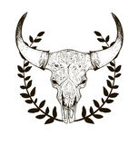 Cow ckull with horns Royalty Free Stock Photos