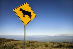 Cow crossing sign in Hawaii. royalty free stock photos