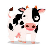 Cow so cute Stock Images